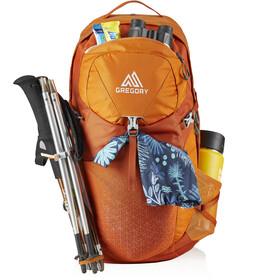 Gregory Juno 30 Backpack Women arroyo orange